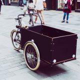 Cykelanhænger er en smart og miljøvenlig transportform til små børn