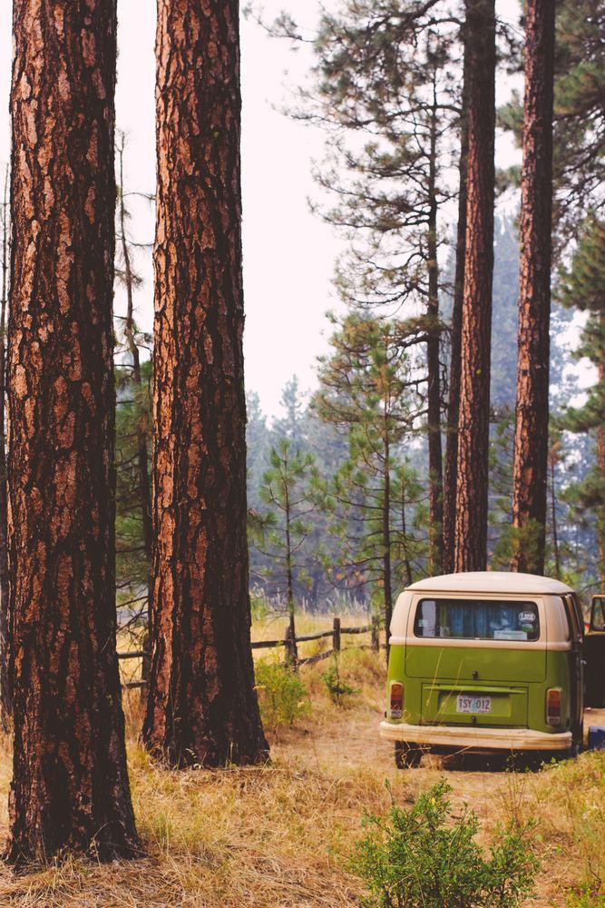 Hvorfor findes der så mange campingpladser i Danmark?!